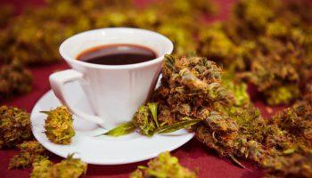 Association of Coffee & Cannabis