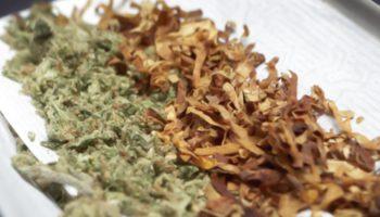 Habitudes de mélanger avec du tabac