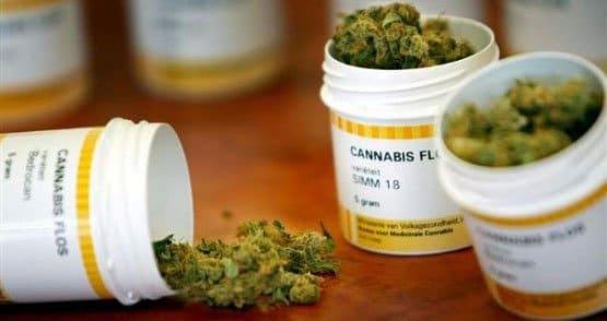 Cannabis-in-farmacia-France