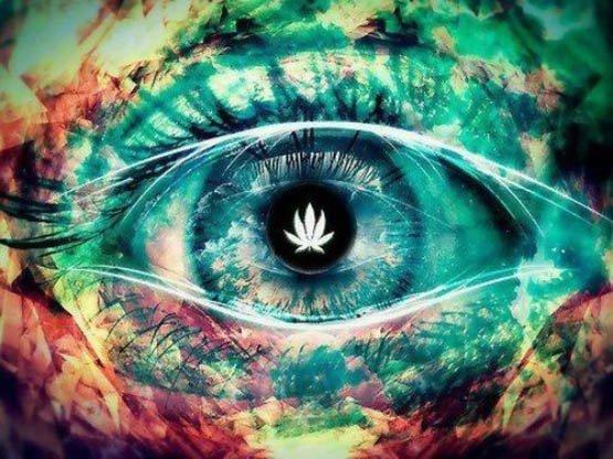 7 bonnes raisons de ne pas mélanger le tabac avec de la marijuana