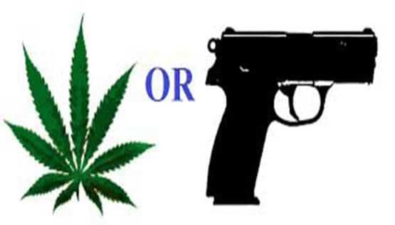 gun_weed_cannachronicle