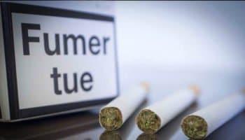 Waarom laten de tabakswinkels marihuana niet verkopen?
