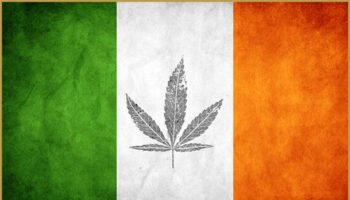 Ireland considers Medical cannabis