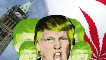 Kepresidenan Trump mempromosikan pasar Kanada