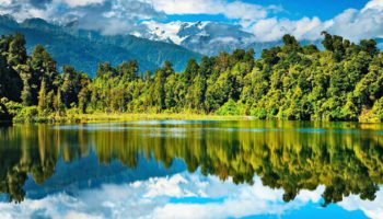 Первые клинические испытания КБР в Новой Зеландии