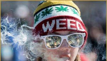 Justin Trudeau déçoit les partisans de la légalisation canadienne