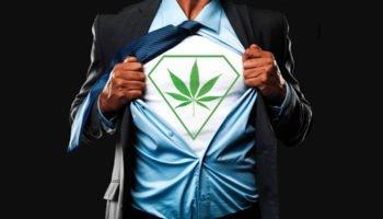 Le migliori scuole di formazione di cannabis