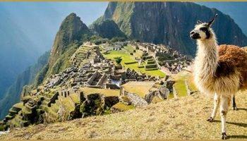 Peru vecht voor legalisatie