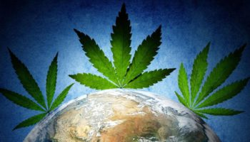 Top 25 countries for weed lovers