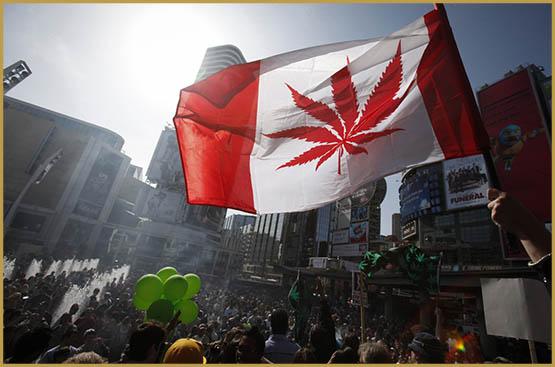 Новий світовий порядок, Канада, 420,4.20 в Канаді