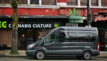 Las redadas contra la Cultura del Cannabis continúan
