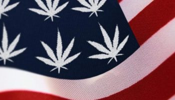 7 US states preparing for legalization
