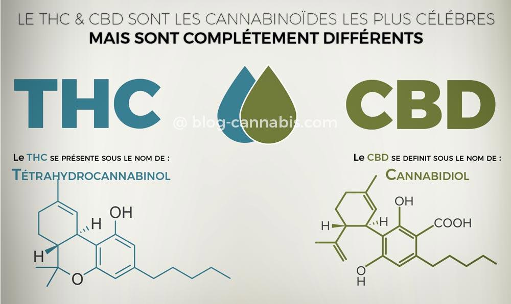 Différence entre THC & CBD