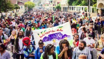 GMM або Всесвітній марш визволення конопель