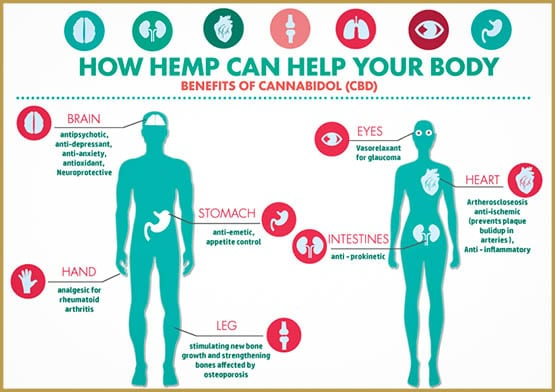 The ideal dosage for the use of CBD oil