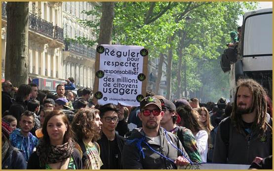 không bị buộc tội, Pháp, Nhà tù, sự phân hóa, trái ngược