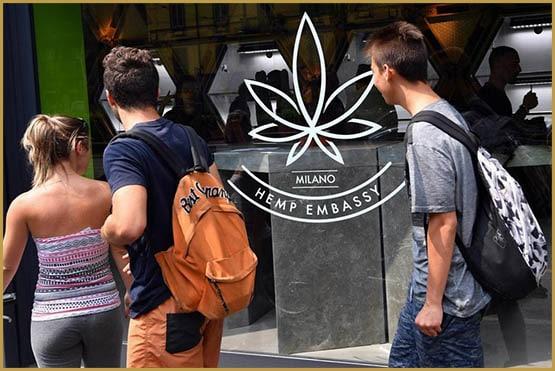 Посольство конопель, вирізання, легалізація, Італія