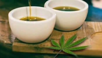 Propriétés thérapeutiques du thé infusé au cannabis