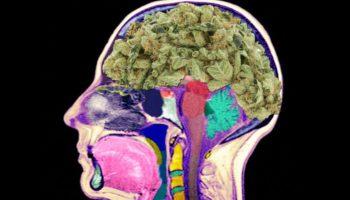 Stroke prevention: new study