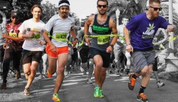Le CBD gagne en popularité auprès de la médecine sportive