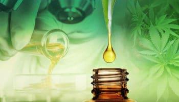 CBD kan modvirke de negative virkninger af THC