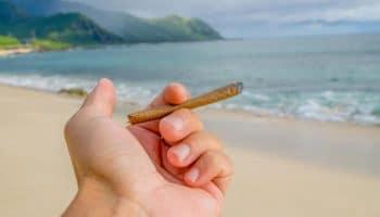 Los californianos pueden fumar y vapear al aire libre