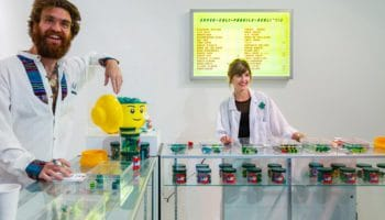 LEGO наденет конопляный пластик от 2030
