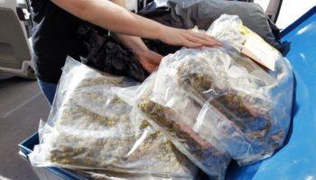mulhouse,Saisie d'une tonne de cannabis,Brigade des stups