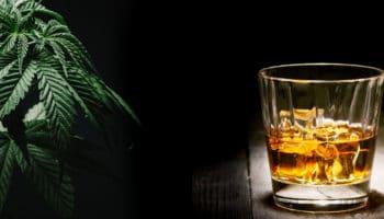 Chute des ventes d'alcool dans les pays ayant légalisé