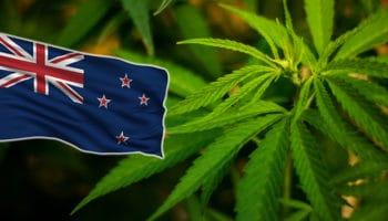 Le parlement néo-zélandais vote pour la légalisation