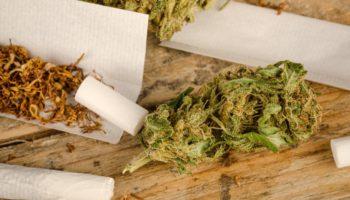 Cannabis VS Tobak: Hvad er det værste for dine lunger