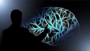 Сорняк против дегенерации мозга