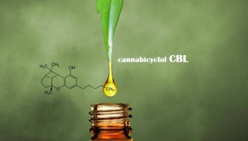 What is CBL?
