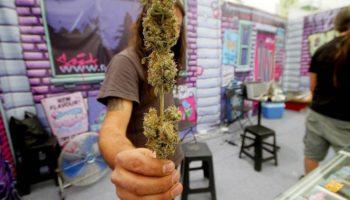 Opening van de Cannabis Cup in Mexico
