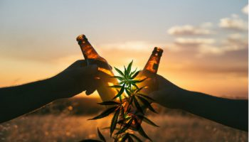 Beer infused with cannabinoids