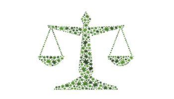 Forvirring i den franske presse mellem CBD og medicinsk cannabis