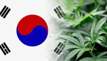 Ταϊλάνδη, νομιμοποίηση, Νότια Κορέα