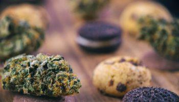 Le 11-OH-THC un cannabinoïde plus puissant que le THC