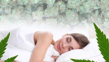 Le cannabis médical et l'apnée du sommeil