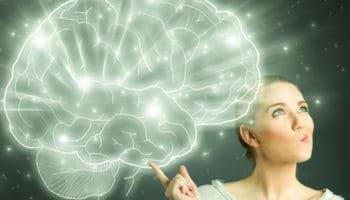 эндоканнабиноидная система, каннабидиол, мозг