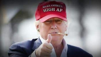 Trump, G-7, larangan federal