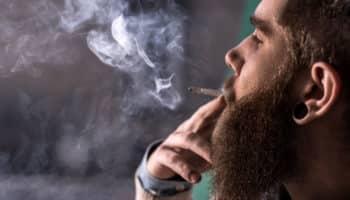 συντηρητικό κάνναβης, επαγγελματίες καπνιστές