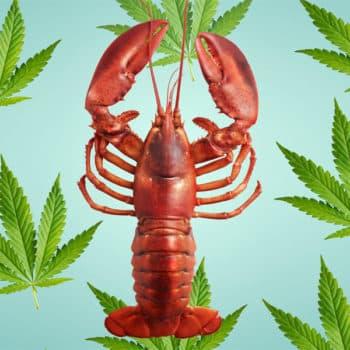 homard,Charlotte's Legendary Lobster Pound,restaurant