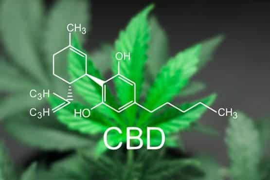 bienfaits,médecine,huile CBD