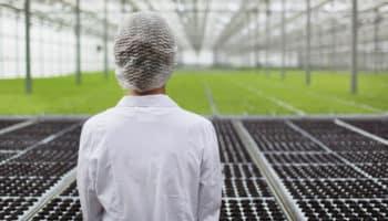 tự động hóa, sản xuất, robot