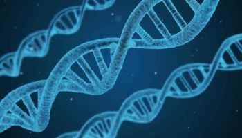 thc, DNA, geenid