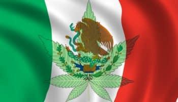 верховный суд, легализация Мексика