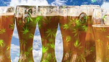 Budweiser, AB InBev, đồ uống có đường, Stella Artois
