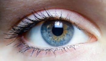 cataract, primair openhoekglaucoom, intraoculaire druk, glaucoom