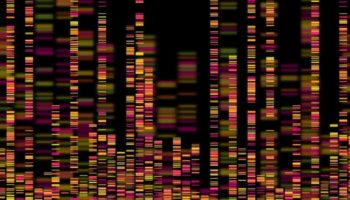 genome sequencing, Dr Gil Ronen, artificial intelligence